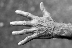 hand elderly woman wrinkles black and white 54321 250px
